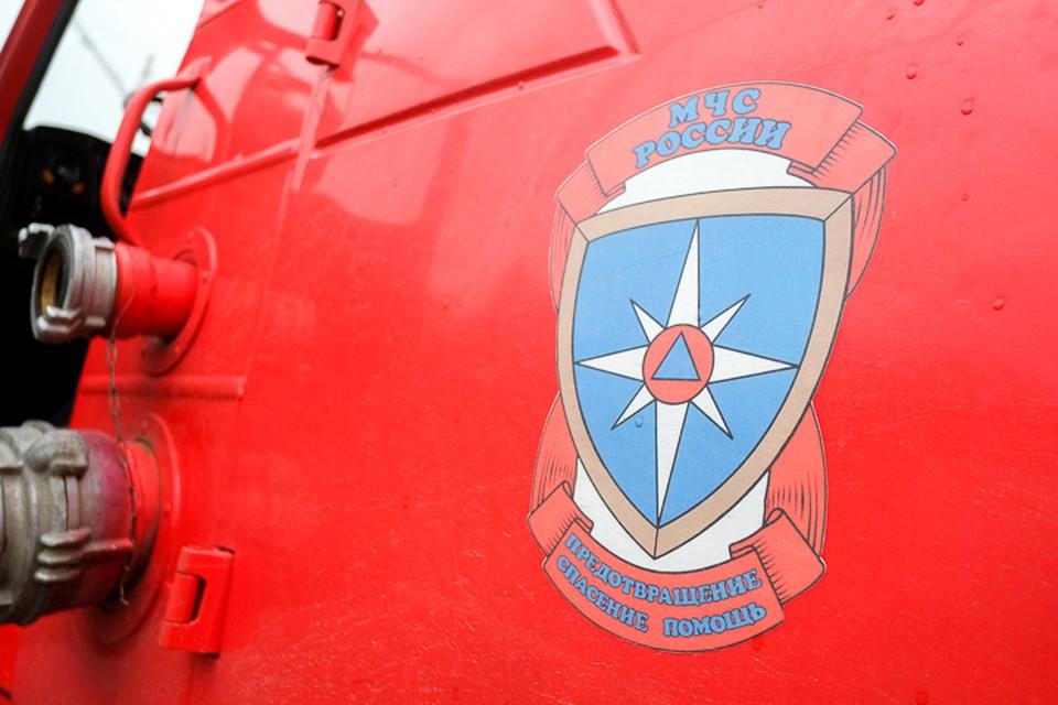 Частный самолет совершил аварийную посадку в Ленобласти