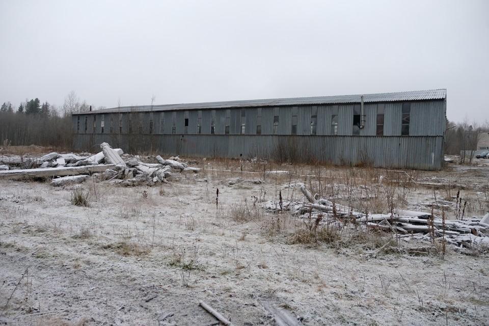 Нарколаборатория в поселке Обуховец маскировалась под пилораму. Ее тайну раскрыл обычный сельский участковый.