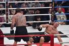 Емельяненко убрал Кокляева двумя ударами