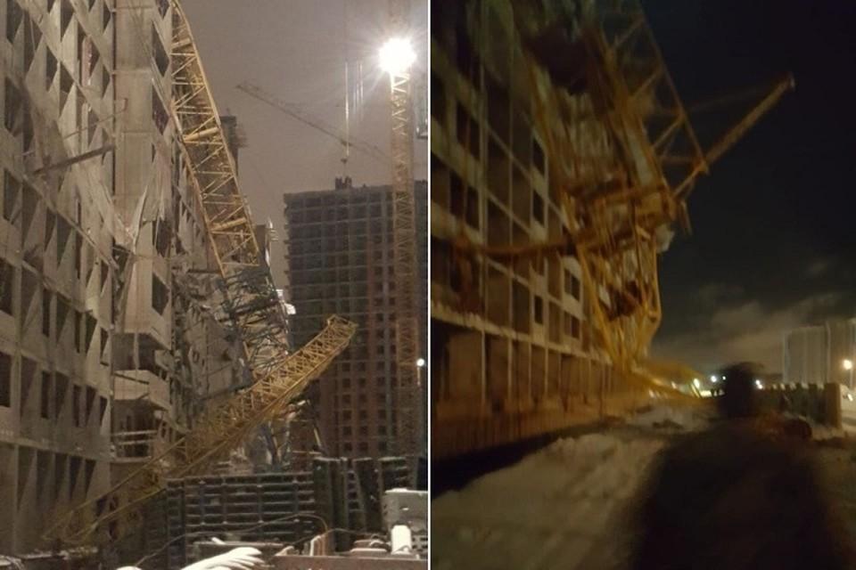 В Мурино упал башенный кран. Фото: vk.com/spb_today