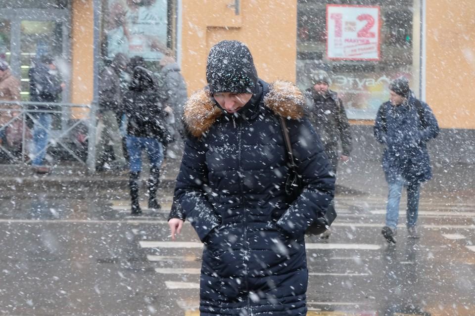 Мокрый снег и шквальный ветер задержатся в Санкт-Петербурге ненадолго - уже днем осадки должны сойти на нет.