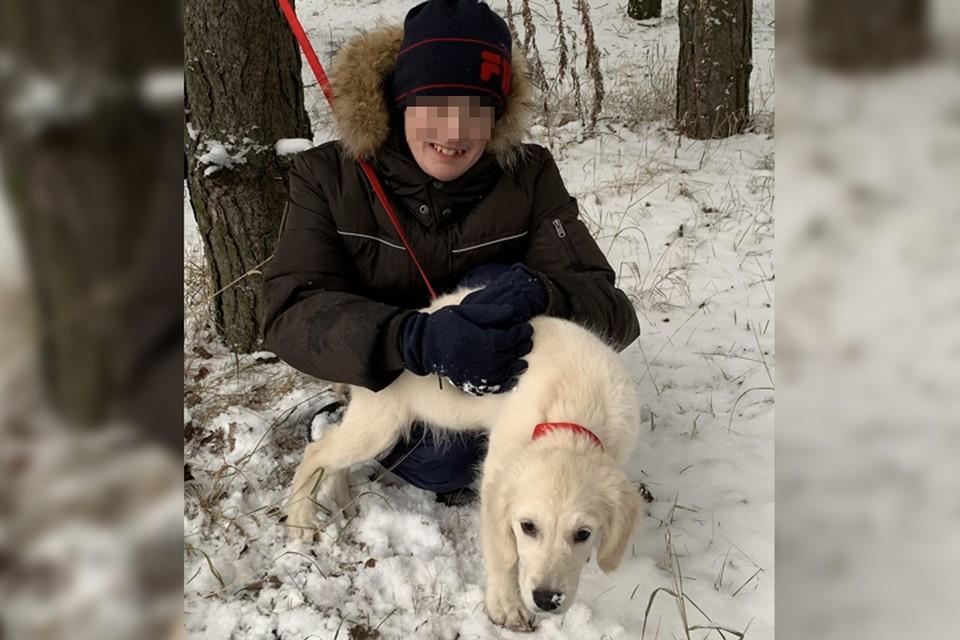 «Какой заводчик теперь отдаст им щенка?»: 4-месячный ретривер, купленный для ребенка-инвалида, погиб на болоте в Нижнем Новгороде