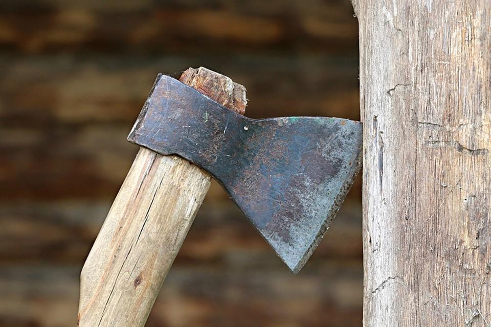 В Новом Уренгое судят мужчину, едва не зарубившего приятеля в бане Фото: pixabay.com