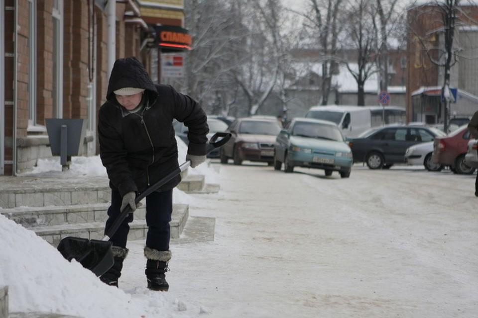 Сэкономленные на бесснежной зиме деньги пойдут на уборку летом.