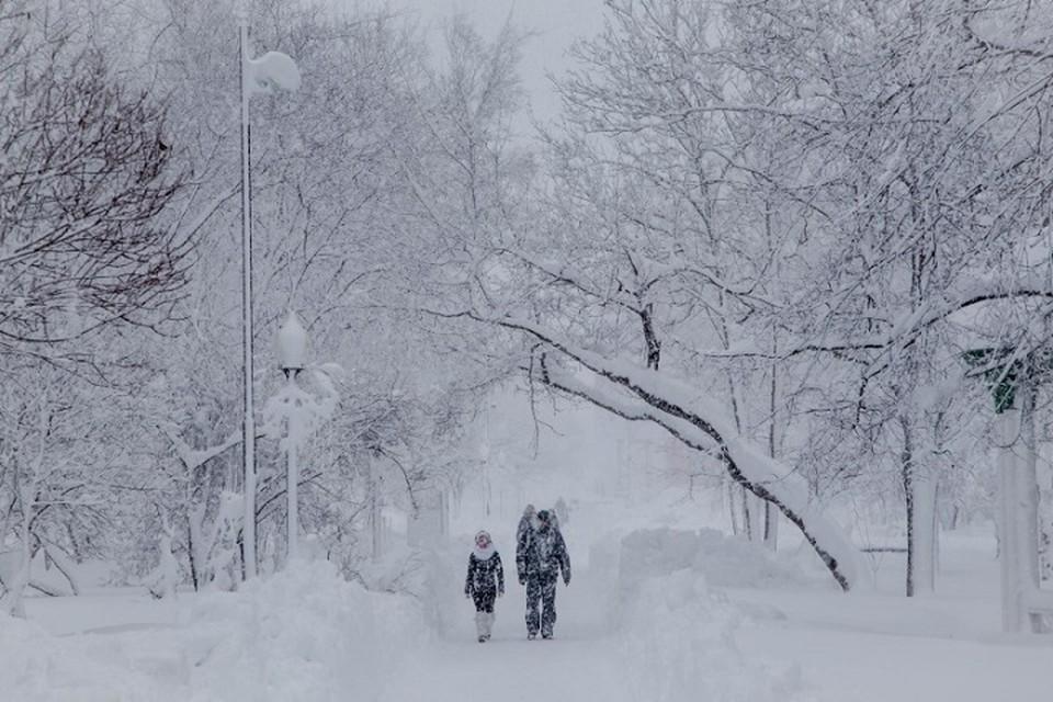 На Ямале ждут усиления ветра до 18 м/с Фото: 89.mchs.gov.ru