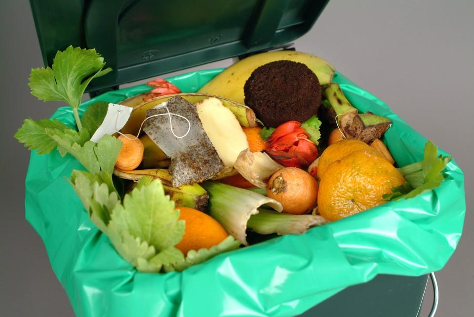 Первый пункт приема органических отходов открылся в Северной столице. Фото: shutterstock