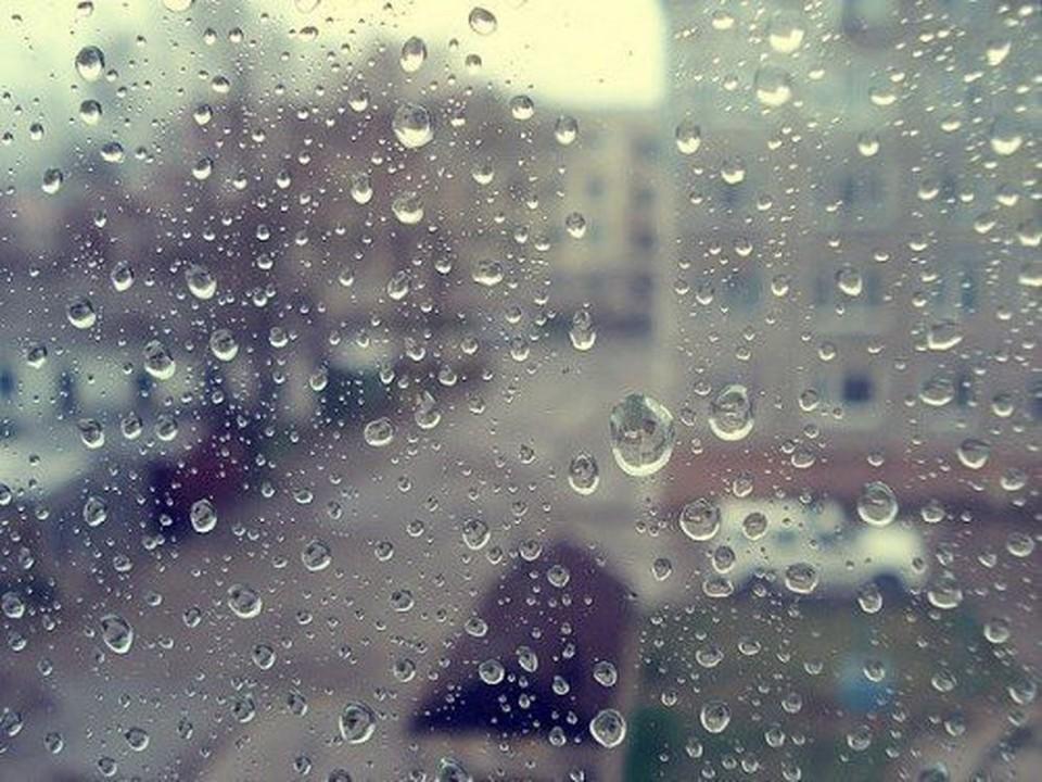 Прогноз погоды в Молдове на 29 января 2020: легкий дождик