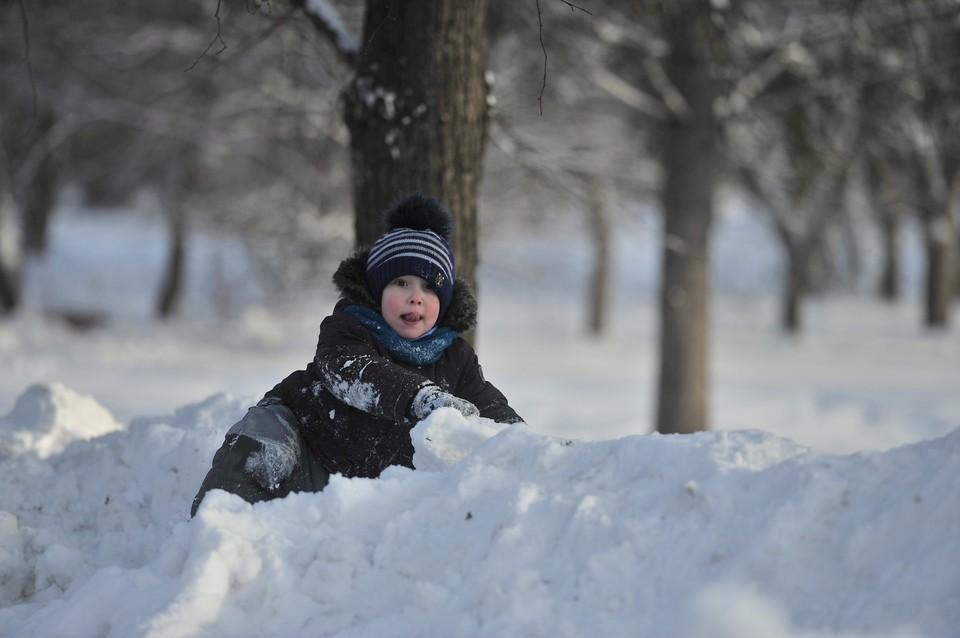 Погода в Коми в первую рабочую неделю февраля будет неустойчивой