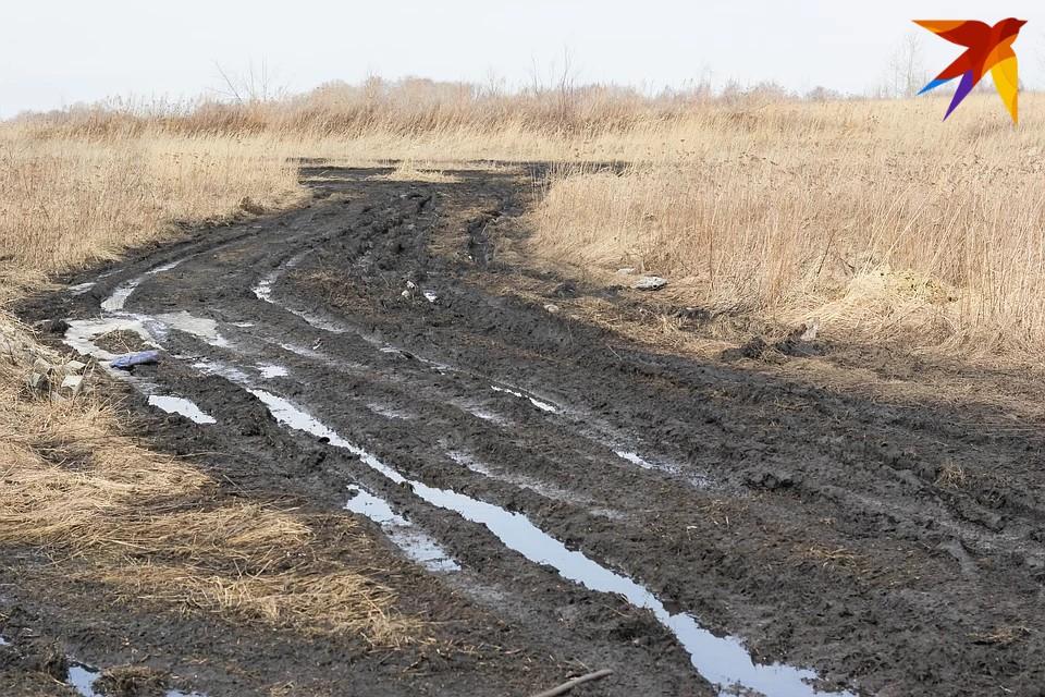 Жители деревни Холмина вынуждены ежедневно ходить по неосвещённому бездорожью.