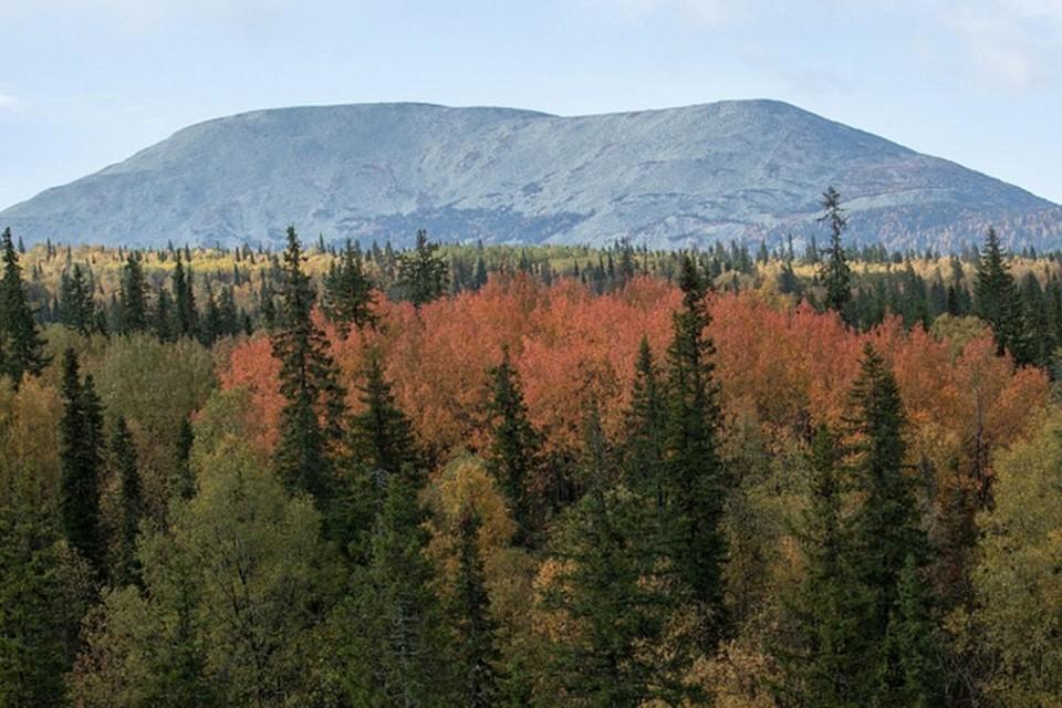 Вершина Яман-Тау - самая высокая на Южном Урале. Фото: Олег Чегодаев