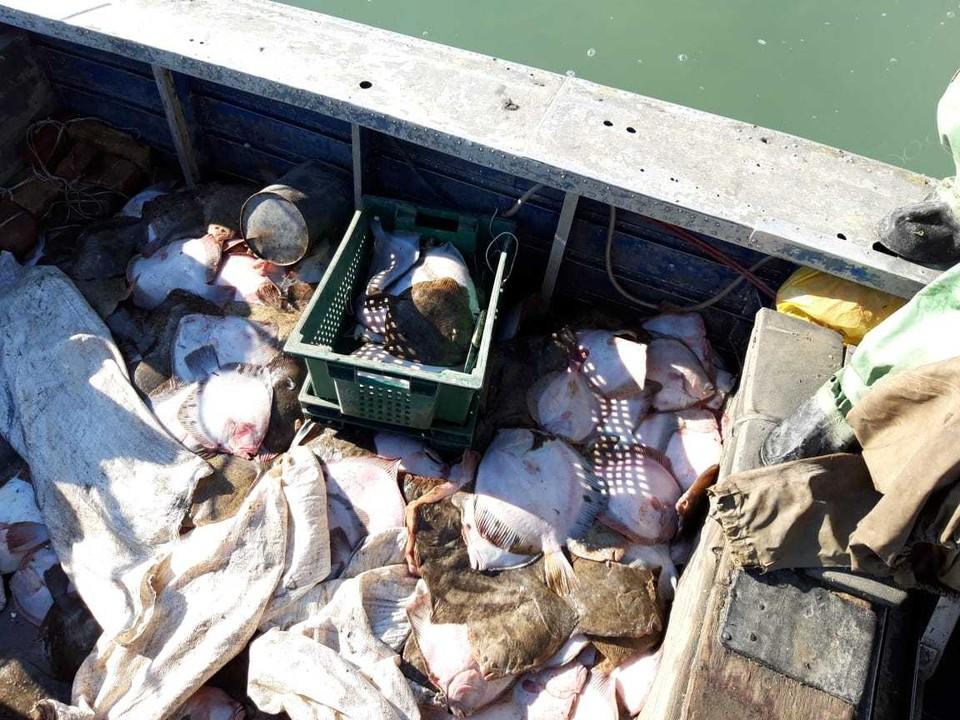 Четыре украинца ловили рыбу в Азовском море без каких-либо документов. Фото: Пресс-служба погрануправления ФСБ по Крыму и Севастополю