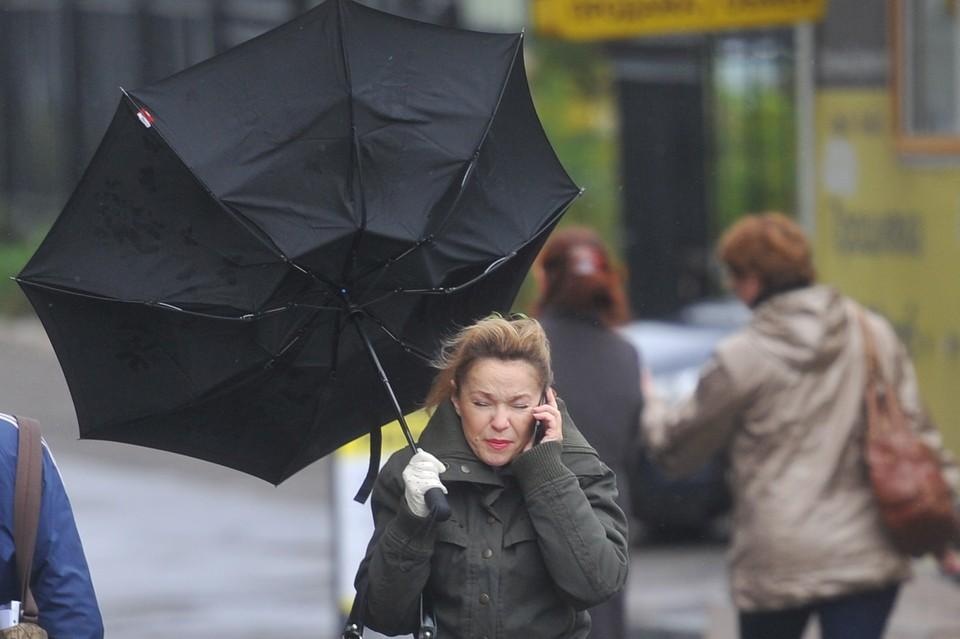 23 февраля петербуржцам и жителям Ленобалсти обещают сильный ветер и дождь.