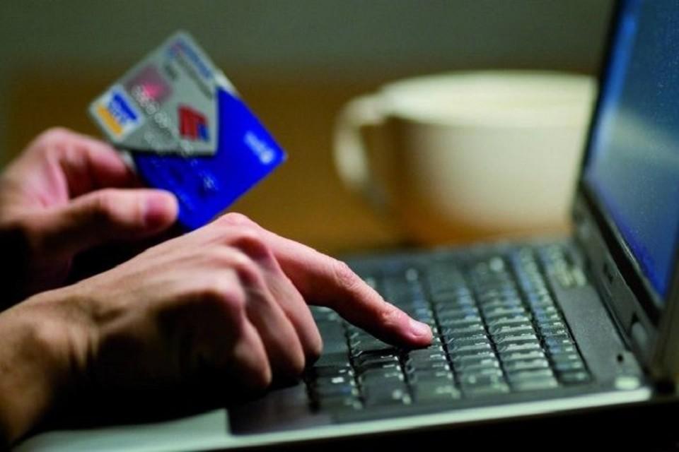 Интернет-мошенникам вирус - что мать родна! (Фото: potokmedia.ru).