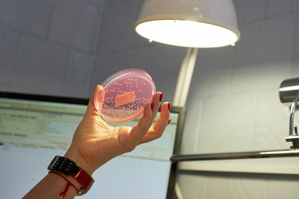 Ученые из Петербурга расшифровали полный геном коронавирусной инфекции