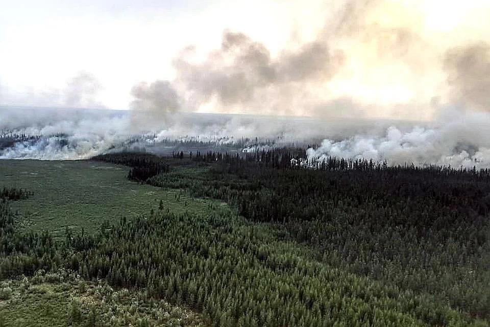 Горящая тайга в республике Саха (Якутия), август 2019 г