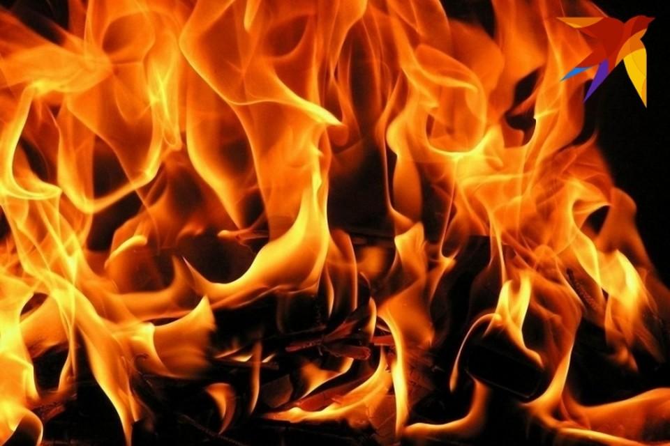 В Гродно накануне весенних каникул загорелась гимназия.