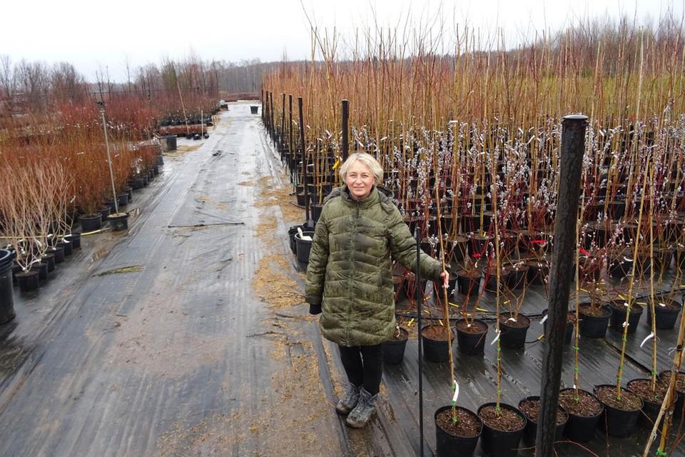 Ирина Савватеева рассказывает об особенностях этой отрасли, оказавшейся на краю гибели.