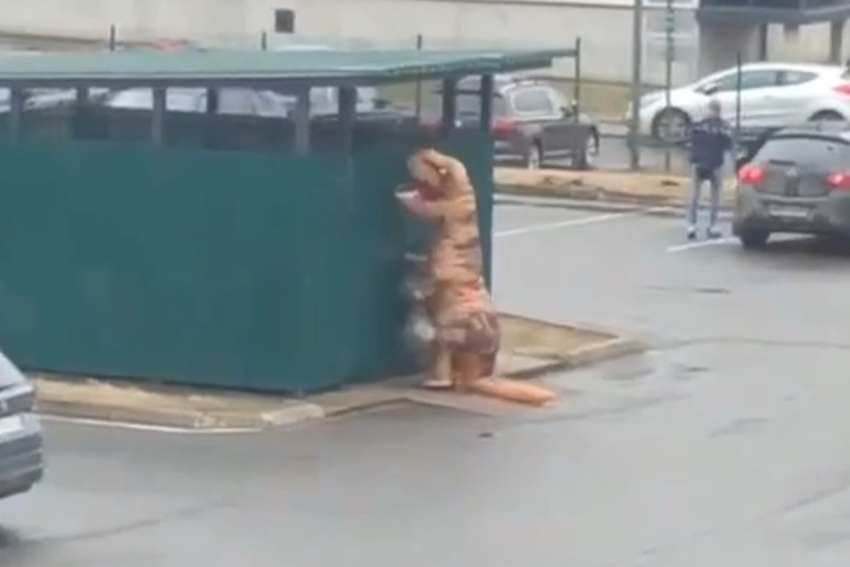 Во Всеволожске динозавр вышел из карантина, чтобы выкинуть мусор. Фото: СОЦСЕТИ