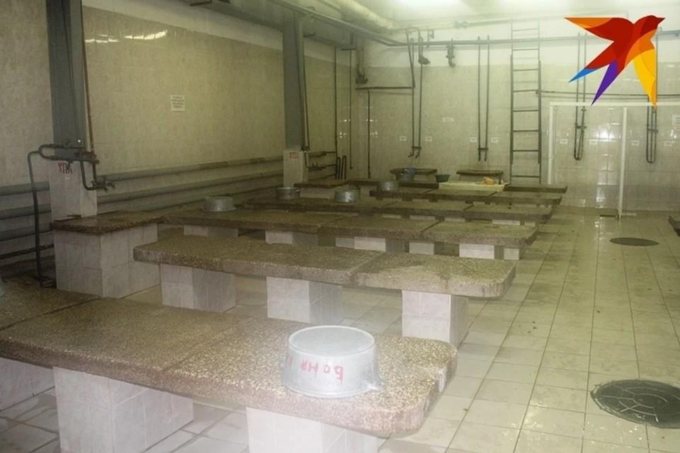 На следующей неделе в городе заработают три муниципальные бани