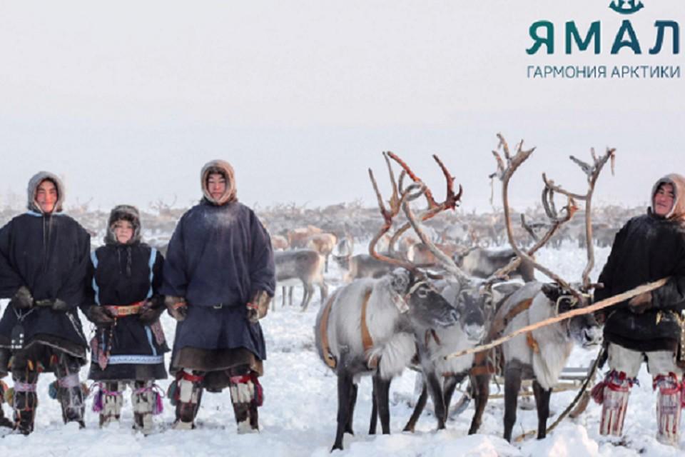 На Ямале назовут лучших в индустрии туризма Фото: С.Гавриленко yanao.ru