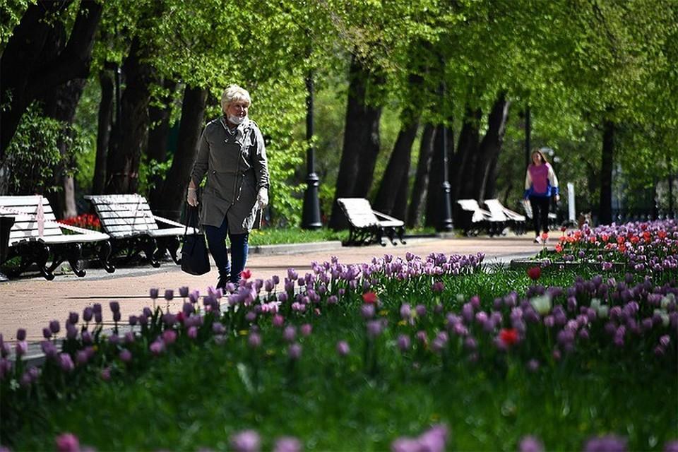 В Москве ожидаются прохладные выходные