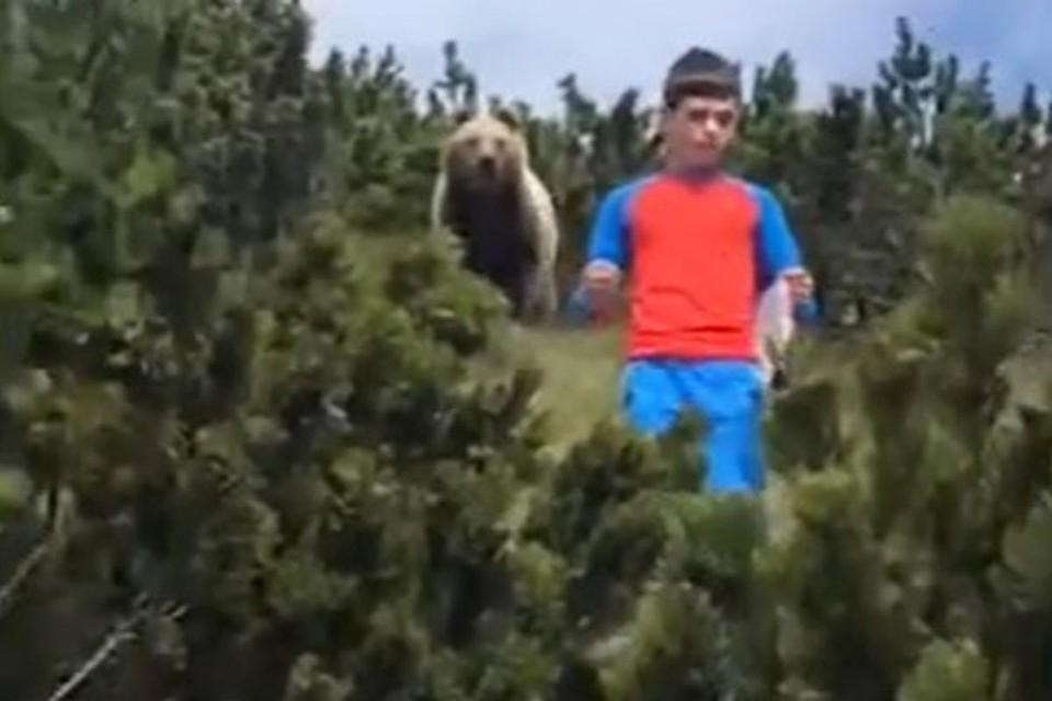 Юный Алессандро продемонстрировал изрядную выдержку во время нежданной встречи с медведем.