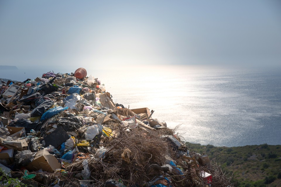 Челенж направлен на привлечение внимание граждан к проблеме незаконного сброса мусора. Фото: shutterstock.com.
