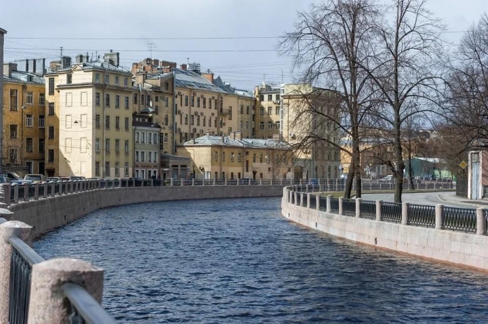 Экологи рассказали о проделанной работе за май в Санкт-Петербурге.