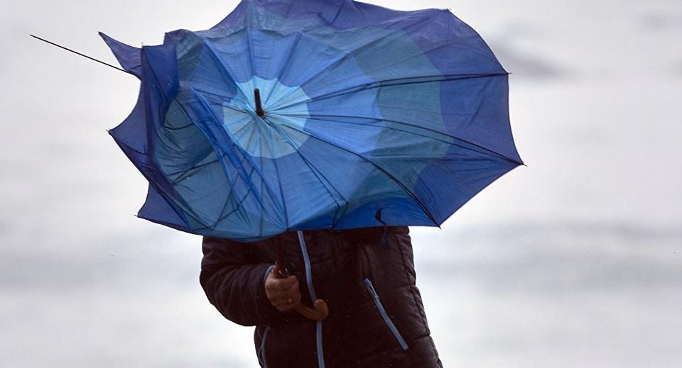 В Акмолинской области местами ожидаются гроза, град, ветер северо-восточный.
