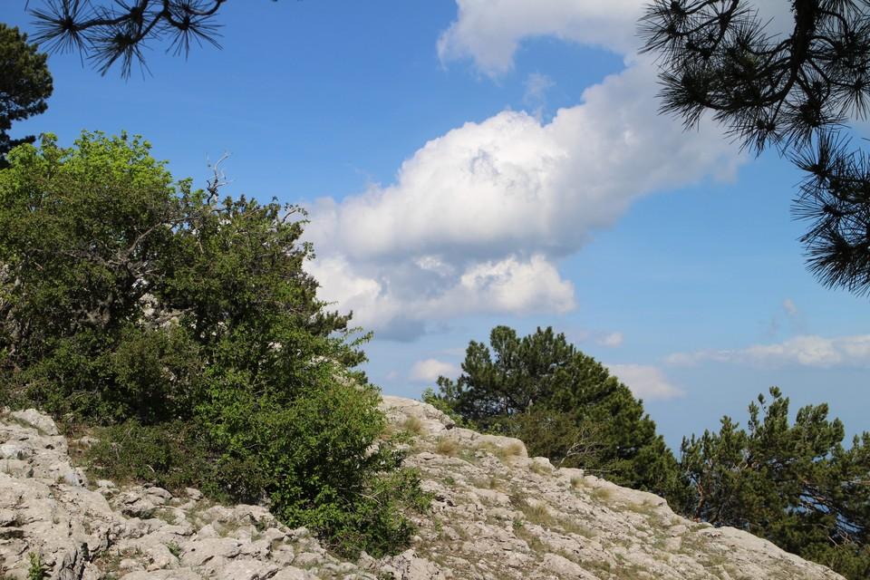 На Южном берегу Крыма переменная облачность