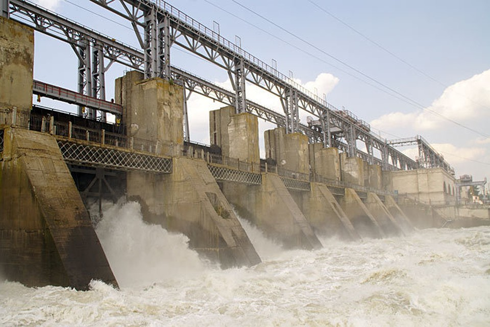 Строительство ГЭС привело к исчезновению на молдавском отрезке Днестра осетровых рыб, судака, леща, щуки и окуня.