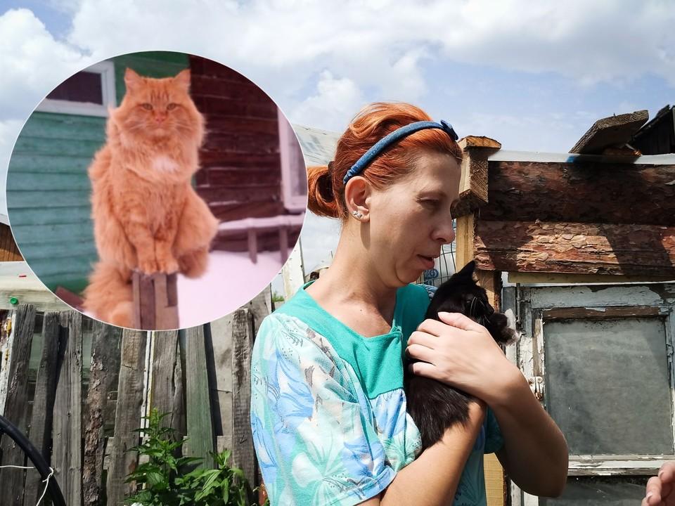 Оксану обвиняют в похищении кота Фили. Фото: Личный архив героя/Алена МАРТЫНОВА