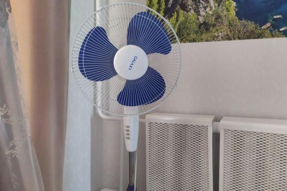 В жару дома без вентилятора не обойтись