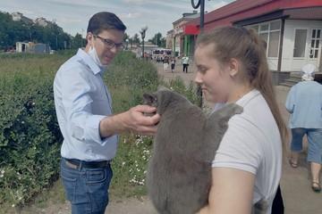 «Пушистая радость»: во время разбора завалов на месте взрыва газа в Нижнем Новгороде спасатели нашли кота