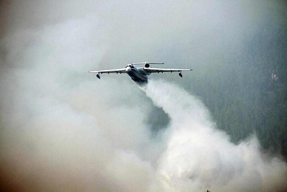 40 воздушных судов участвуют сейчас в спасении леса от огня.