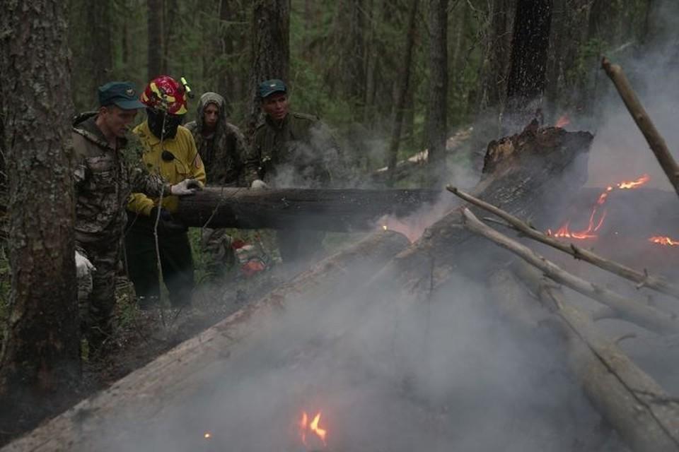 С огнем в заповеднике борются больше 50 человек. Фото: пресс-служба заповедника «Денежкин Камень»