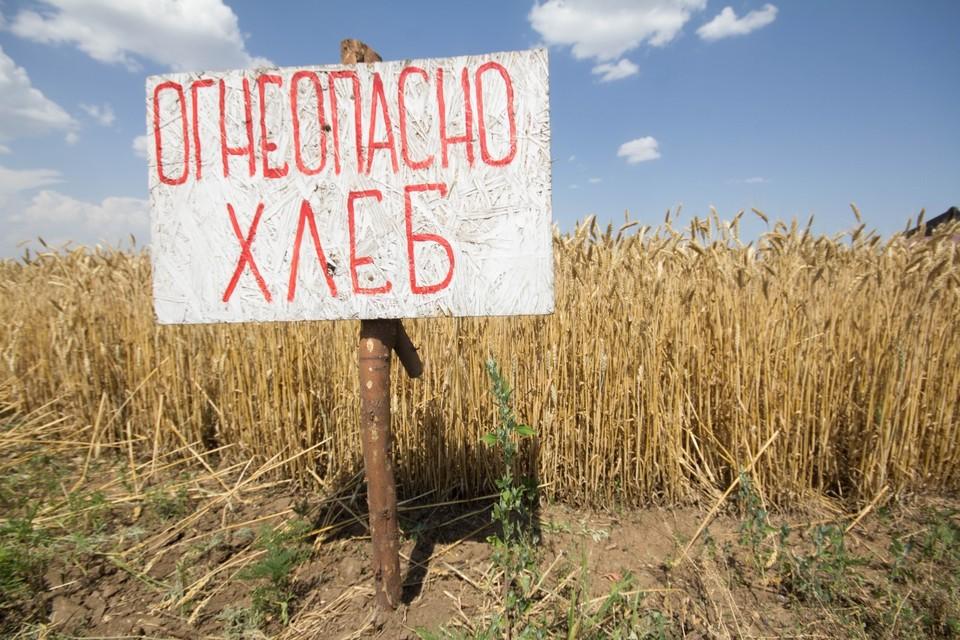 Количество пожаров в августе возрастает. ФОТО: Андрей ТРУБЕЦКИЙ