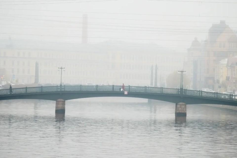 Туман нагрянет в Ленобласть с 26 по 27 июля.