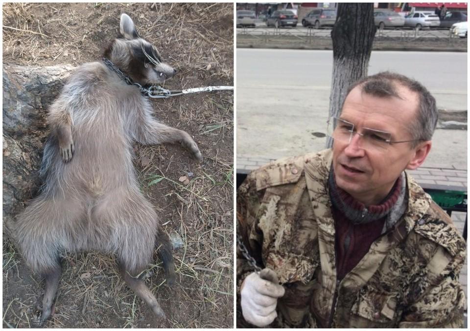 Мужчина прославился благодаря неприятным инцидентам с животными Фото: соцсети
