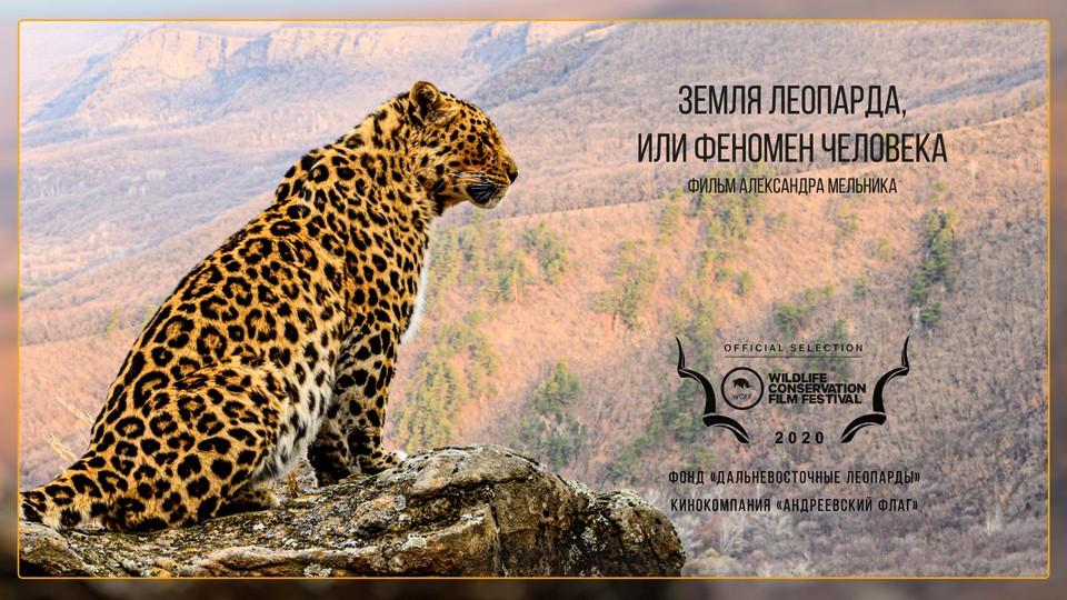 """Постер документального фильма, который покажут на кинофестивале """"Wildlife Conservation Film Festival"""". Фото: сайт национального парка """"Земля леопарда"""""""
