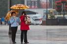 Погода на неделю в Калининграде: сначала ливни и +18 градусов, в воскресенье - жара