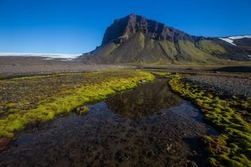 ПОРА и «ВНИИ Экология»  будут сотрудничать в Арктике