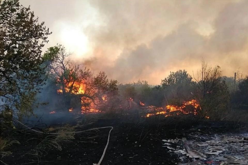 В Ростовской области потушили масштабный пожар. Фото: ГУ МЧС по РО
