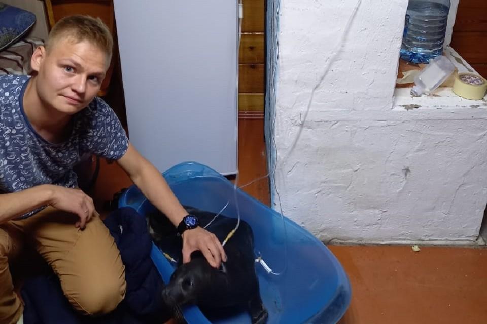Сейчас спасенного на Байкале нерпенка приходится держать во время капельниц. Фото: Вадим Власов