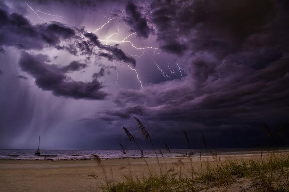 Дожди прогнозируются на всей территории Приморья.