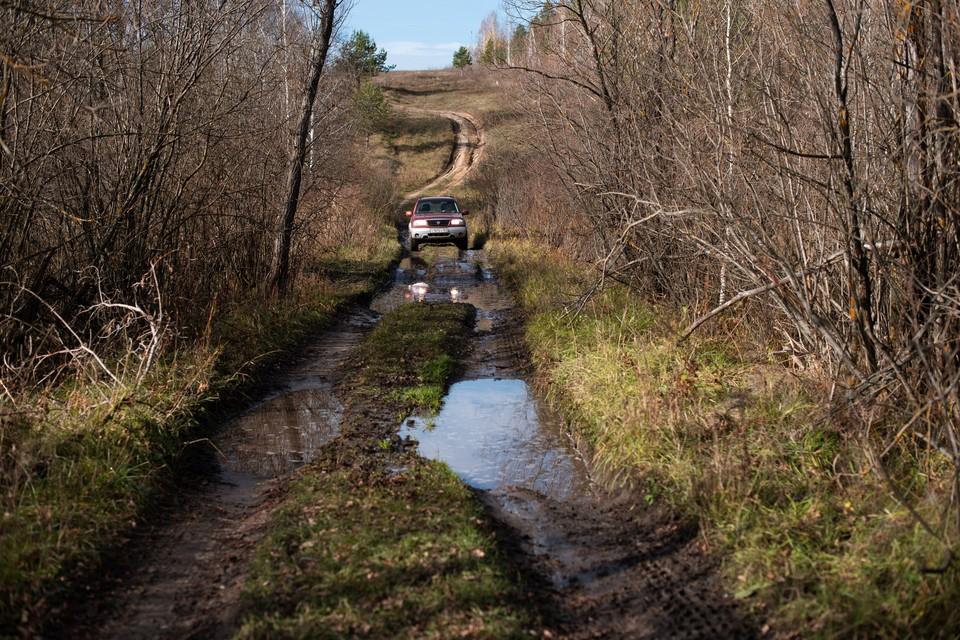 В Печорском районе районе из леса вывели двух женщин и ребенка