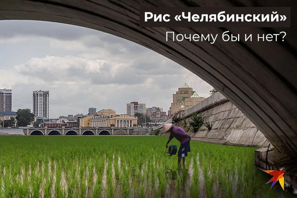 Коллаж: Сергей Зверев