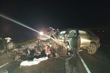 Четыре человека погибли на трассе Тюмень – Курган из-за выбежавшего на дорогу кабана