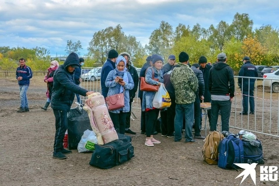 С мая из Самарской области вывезли около 10 тысяч граждан Узбекистана