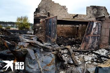 Пострадавшие от пожаров под Воронежем: «Огонь пошел со всех сторон. Кругом чернота, ничего не видно»